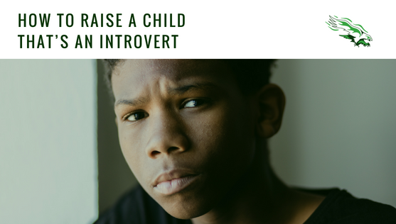 How to raise a child that's an introvert